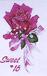 Click for more details of Sweet 16 (cross-stitch pattern) by The Silver Lining