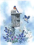 Click for more details of The Bluebird Trail (cross stitch) by Crossed Wing Collection