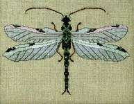 Click for more details of The Silver Dragonfly (cross stitch) by Nora Corbett
