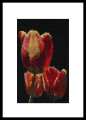 Click for more details of Tulip Trio  (cross-stitch) by Mary Gaines