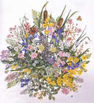 Click for more details of Wildflower Display (cross stitch) by Permin of Copenhagen