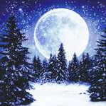 Click for more details of Winter Moon (cross-stitch) by Kustom Krafts