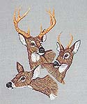 Click for more details of Winter Whitetails (cross-stitch pattern) by Country Cross Stitch