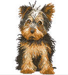 Click for more details of Yorkshire Terrier (cross-stitch kit) by Lanarte