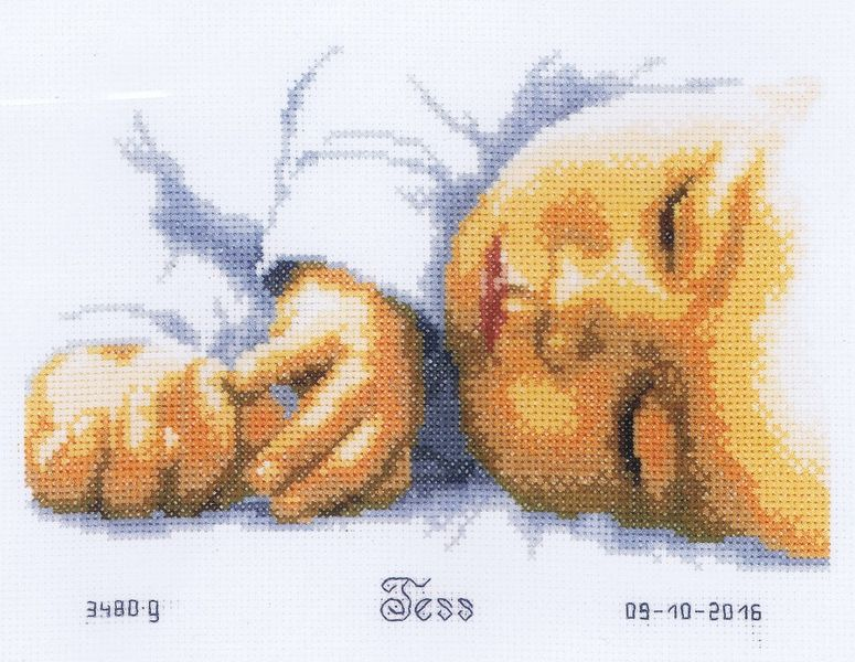 Вышивка метрика младенец на руках 14