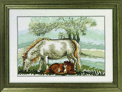 Spring - Horse and foal - click for larger image