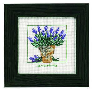 Lavender pot - click for larger image