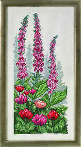 Foxgloves and poppies - click for larger image