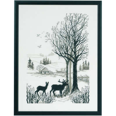Roe Deer - click for larger image