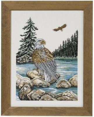 Sea Eagle - click for larger image