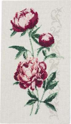 Peonies - click for larger image