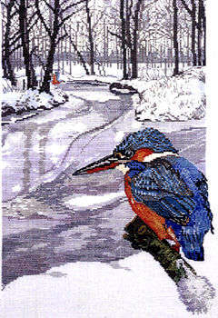 Winter kingfisher - click for larger image
