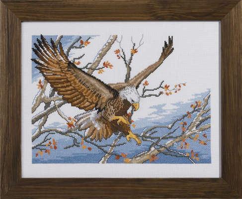 Eagle - click for larger image