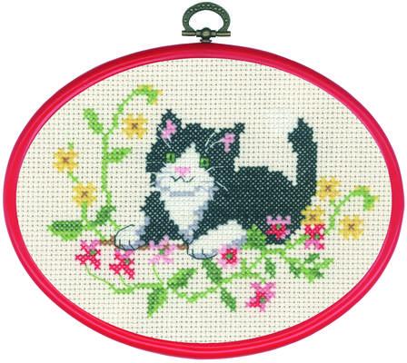 Black Cat - click for larger image