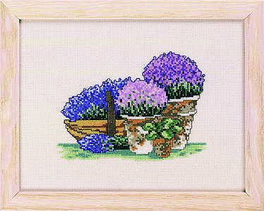 Purple flowers in pots - click for larger image