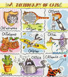 A Dictionary of Cats
