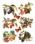 Click for more details of Berries and Butterflies (cross stitch) by Thea Gouverneur
