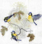 Click for more details of Blue Tits and Seed Heads (cross stitch) by Rose Swalwell