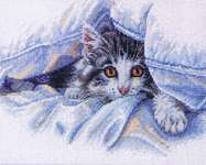 Click for more details of Cat Comfort (cross stitch) by Dimensions