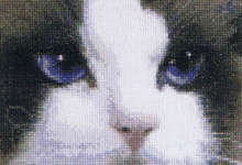 Click for more details of Cats - Smokey & Blue (cross stitch) by Thea Gouverneur