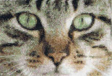 Click for more details of Cats - Tess & Simba (cross stitch) by Thea Gouverneur