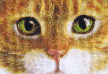 Click for more details of Cats - Tiger & Kitty  (cross stitch) by Thea Gouverneur