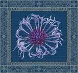 Click for more details of Centaurea in Spring (cross stitch) by DoodleCraft Design