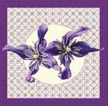 Click for more details of Clematis in Bloom (cross stitch) by DoodleCraft Design