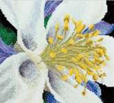 Click for more details of Columbine (cross stitch) by Thea Gouverneur