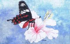 Click for more details of Crimson Rose (cross stitch) by Fire Wing Designs