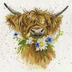 Click for more details of Daisy Coo (cross stitch) by Bothy Threads