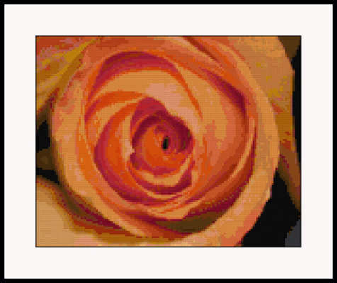 Click for more details of Elegant Rose (cross-stitch pattern) by Mary Gaines