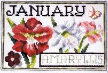 Click for more details of Flowers of the Month - January Amaryllis (cross stitch) by Stoney Creek
