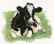 Click for more details of Fresian Cow in a Meadow (cross stitch) by Thea Gouverneur