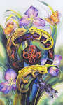 Click for more details of Garden Magic (cross stitch) by Heaven and Earth Designs