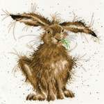 Click for more details of Hare Brained (cross stitch) by Bothy Threads