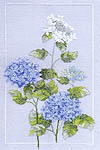 Click for more details of Hydrangea (cross stitch) by Rose Swalwell