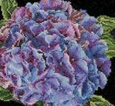 Click for more details of Hydrangea (cross stitch) by Thea Gouverneur