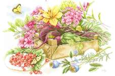 Click for more details of In the Garden (cross stitch) by Marjolein Bastin