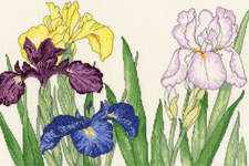 Click for more details of Iris Blooms (cross stitch) by Bothy Threads