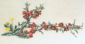 Click for more details of Japonica and Dandelion (cross stitch) by Thea Gouverneur