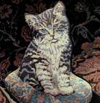 Click for more details of Kitten on a Cushion (tapestry) by Glorafilia