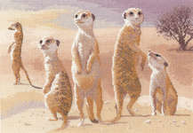 Click for more details of Meerkats (cross stitch) by John Clayton