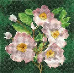 Click for more details of Mini Dog Rose (cross-stitch kit) by John Clayton