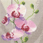 Click for more details of Mini Orchid (cross-stitch kit) by John Clayton