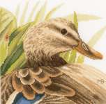 Click for more details of Mother Duck (cross stitch) by Marjolein Bastin