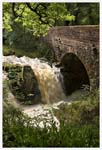 Click for more details of Old Water in Spate (photograph) by Margaret Elliot