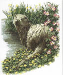 Click for more details of Otter (cross stitch) by John Stubbs