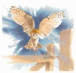 Click for more details of Owl in Flight (cross stitch) by John Clayton