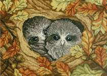 Click for more details of Owls (cross stitch) by MP Studios